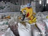 Đồng bằng sông Cửu Long đã xuất khẩu trên 4 triệu tấn gạo