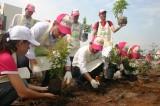 """AEON Bình Dương Canary tổ chức chương trình """"Cánh rừng quê hương"""""""