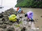 Sử dụng 3.000 tỷ đồng vốn vay ODA để ứng phó với biến đổi khí hậu