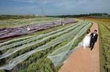 Chiếc váy cưới có đuôi dài 4.800 m
