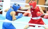 Boxing mang về 2 HCĐ cho đoàn Việt Nam
