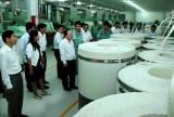 Doanh nghiệp Hàn Quốc  đầu tư hiệu quả tại Bình Dương