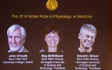 Vinh danh giải Nobel Y học 2014