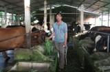 Xã Lai Hưng,:  Tích cực xây dựng nông thôn mới