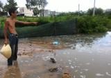 Nước thải công ty xả thẳng ra môi trường