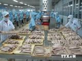 Nga muốn tăng cường nhập khẩu nhiều hàng hóa của Việt Nam