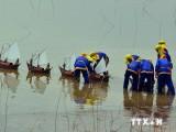 Kiên quyết phản đối Trung Quốc xây dựng đường băng trên đảo Phú Lâm