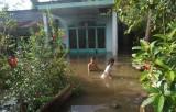 Triều cường vượt báo động 3, nhiều khu vực ven sông Sài Gòn bị ngập nặng