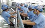 Doanh nghiệp, doanh nhân Bình Dương: Nỗ lực không ngừng