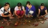 Chi hội Phụ nữ ấp 1A, xã Phước Hòa, Phú Giáo:  Đẩy mạnh hoạt động giúp nhau phát triển kinh tế gia đình