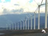 Dự án điện gió lớn nhất Việt Nam đã lên lưới điện Quốc gia
