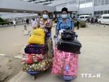 WHO tuyên bố Nigeria chính thức thoát khỏi dịch Ebola