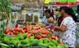 Hệ thống siêu thị Big C tích cực hỗ trợ tiêu thụ 150 tấn cà chua cho bà con nông dân Đà Lạt