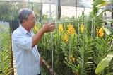 Các cấp hội nông dân:  Đồng hành hỗ trợ hội viên phát triển kinh tế