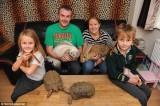 Gia đình chung sống với 145 con vật kỳ lạ