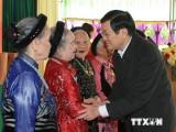 Chủ tịch nước dự Ngày hội Đại đoàn kết dân tộc tại Hà Nam