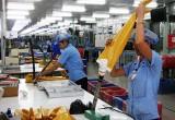 Kinh tế Bình Dương sau 8 năm Việt Nam gia nhập WTO: Cải thiện đầu tư, gia tăng xuất khẩu