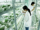Thúc đẩy chuyển giao công nghệ của Israel vào Việt Nam