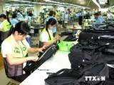 Ngành da giày Việt Nam trước thách thức hội nhập