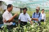 Hội Nông dân thành phố  Sa Đéc: Tham quan các mô hình sản xuất hiệu quả tại Bình Dương