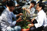 Trường Trung cấp Nghề Tân Uyên: Bế giảng 5 lớp đào tạo nghề nông thôn
