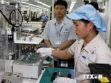 Việt Nam và Brazil lập kỷ lục mới trong trao đổi thương mại
