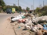Cần xử lý nghiêm hành vi đổ rác trộm