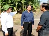 Lãnh đạo tỉnh làm việc tại Khu nông nghiệp ứng dụng công nghệ cao An Thái