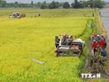 WB giúp Đồng bằng sông Cửu Long ứng phó với biến đổi khí hậu