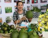 Nhiều sản phẩm bưởi đặc sản Bình Dương có mặt tại hội chợ