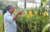 Hội Nông dân huyện Phú Giáo: Điểm sáng trong phong trào Nông dân sản xuất, kinh doanh giỏi