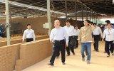 Ông Nguyễn Trần Nam, Thứ trưởng Bộ Xây dựng: Bình Dương xử lý lò gạch Hoffman đúng luật
