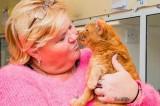 Đoàn tụ với mèo cưng sau 7 năm thất lạc