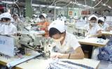 Đầu năm, nỗ lực hoàn thành kế hoạch sản xuất, kinh doanh