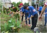 Mô hình tự quản bảo vệ môi trường: Ngày càng nhân rộng