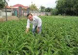Hội nông dân tỉnh: Phát triển các phong trào theo hướng liên kết, tương trợ