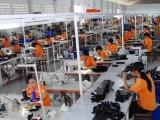 Đa số các công ty Hàn Quốc chọn Việt Nam để kinh doanh