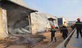Cháy cơ sở sản xuất viên gỗ nén, nhà xưởng bị thiêu rụi