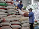 Hỗ trợ cứu đói gần 7.300 tấn gạo cho 12 tỉnh trước Tết Nguyên đán