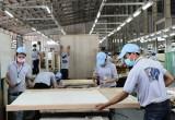 Bàu Bàng: 100% doanh nghiệp hoạt động trở lại