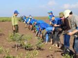 Chương trình hỗ trợ ứng phó biến đổi khí hậu giai đoạn 2016-2020