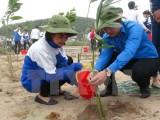 EVN phát động trồng cây hưởng ứng Chiến dịch Giờ Trái đất 2015