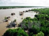 Cà Mau thí điểm cho thuê rừng sản xuất và làm du lịch sinh thái