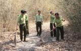 Nhiều biện pháp ứng phó với nguy cơ cháy rừng