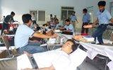 Phú Giáo: Gần 300 đoàn viên công đoàn, giáo viên và học sinh hiến máu tình nguyện