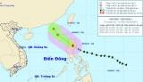 Bão Maysak suy yếu thành áp thấp nhiệt đới
