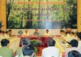 Tập trung ưu tiên 4 nhiệm vụ trọng tâm để bảo vệ, phát triển rừng