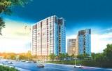 First Home Premium Bình Dương: Sức hút từ căn hộ tiêu chuẩn Hàn Quốc với giá chỉ từ 600 triệu đồng