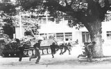 Ngày 15-4-1975: Ác liệt mặt trận Phan Rang, Xuân Lộc