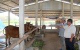Tiếp tục cải thiện đời sống nông dân